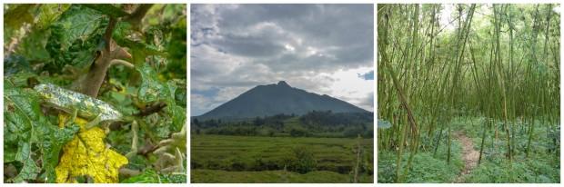 rwanda23